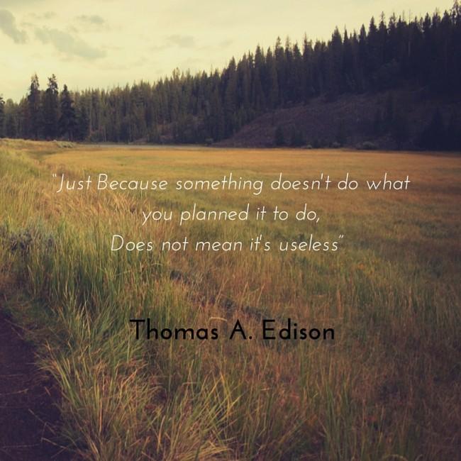 Quote - Thomas Edison